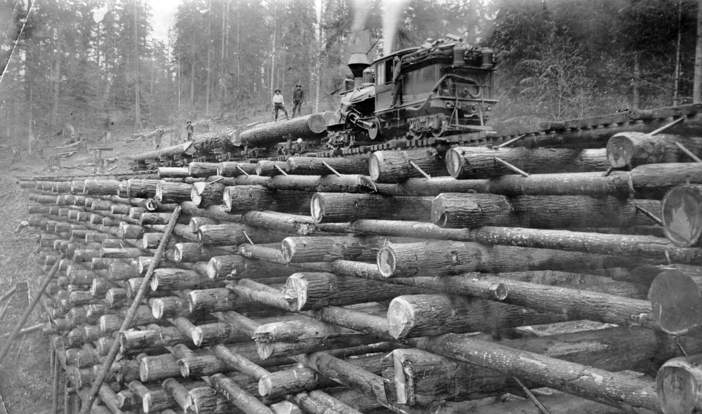 Crib_trestle_on_the_Columbia_and_Nehalem_Valley_Railroad_(3227293964)
