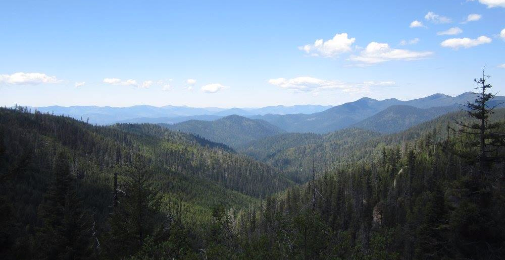 view of Siskiyou National Forest from ORCA_Paul